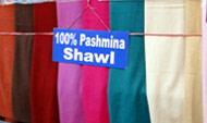 Pashmina & Cashmere